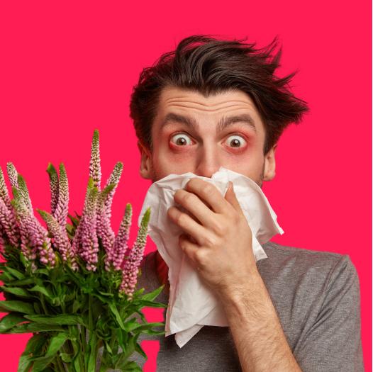 Товари для алергіків